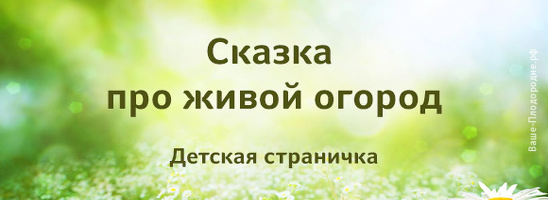 main_image_blog