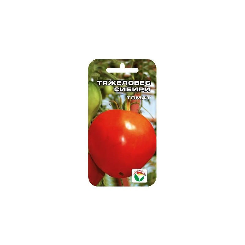 другим, томат тяжеловес сибири отзывы и фото домашних условиях